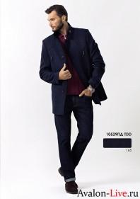 Мужское демисезонное пальто 10529ПД TDD