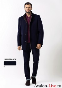 Зимнее мужское пальто 10533ПЗМ WT8