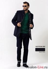Зимнее мужское пальто 10579ПЗМ WT8